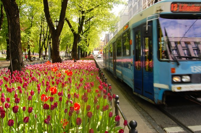I wish these tulips were in better focus to contrast with the rushing trolley