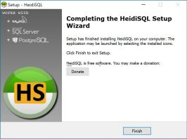 Heidi Setup Wizard - Finish