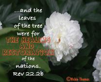 Rev 22:2
