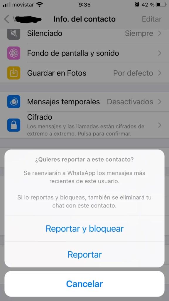 whatsapp reportar