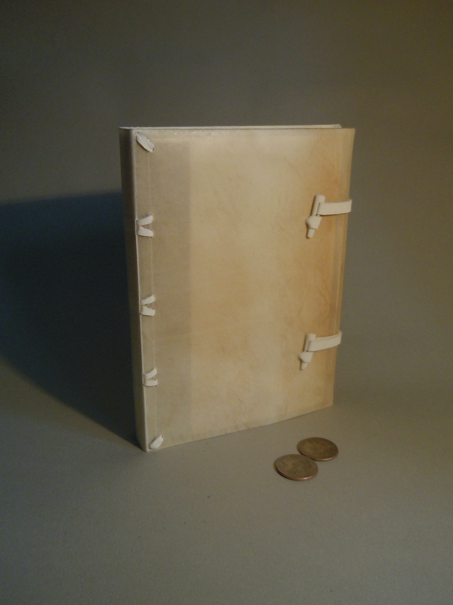 A limp vellum binding with alum-tawed thongs and a horn foredge closure