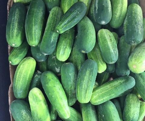 Gram Ettlin's Dill Pickles