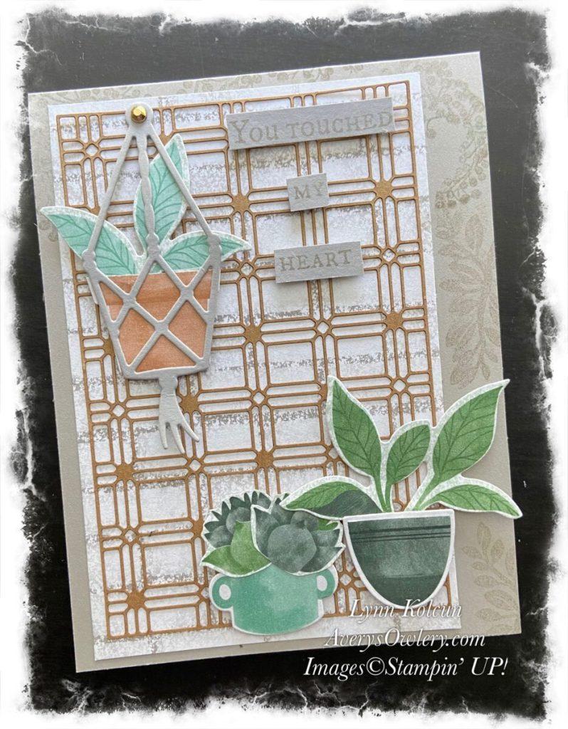 Plentiful Plants