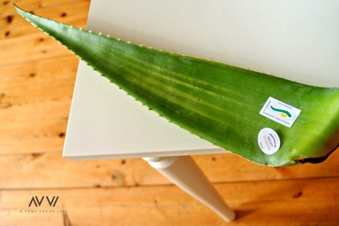 Aloe-Vera-Superfood-Vegan-Santaverde-3