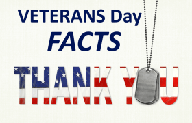 VETERANS DAY FACTS