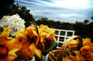 Bouquets Overlooking Ocean by Ave Valencia