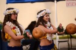 Multi-Cultural Fest