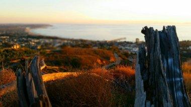 Ventura Botanical Trail by Ave Valencia