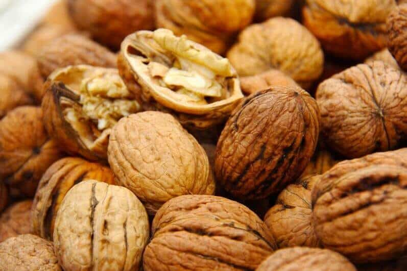 Грецкий орех – секреты ухода Сад и огород
