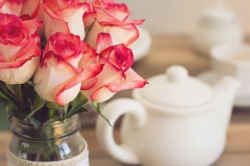 Подкормка роз до и после цветения