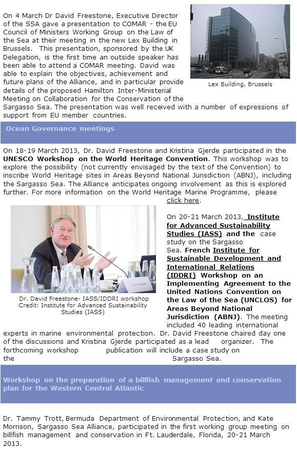 Newsletter Abril2013 - II