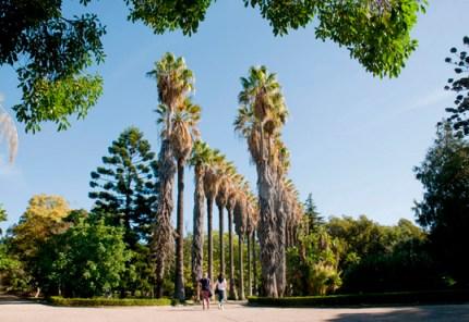 Jardim-Botanico-Tropical_28_538x370