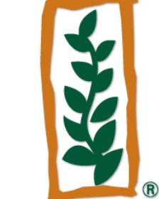 Monsanto - IV