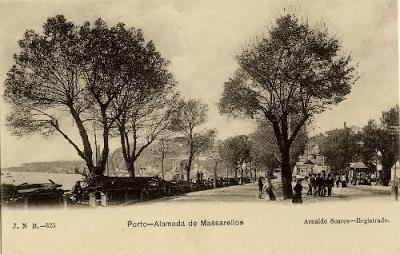 ALAMEDA DE MASSARELOS