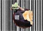 449_uniformisation_alimentaire_VE_7299