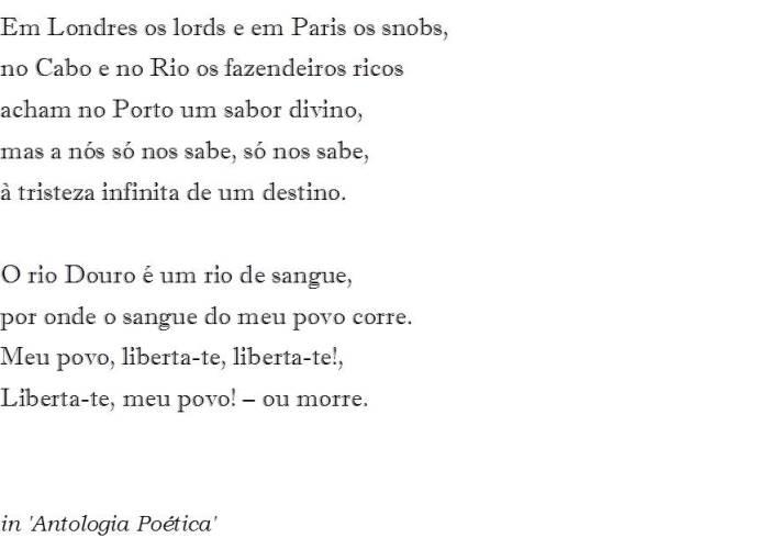 Port Wine - II