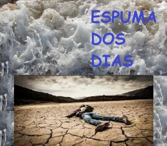 Espuma dos dias_sobreviver
