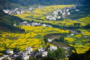 Idyllic Chinese village to open drone base for aerial photography enthusiasts