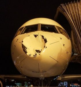 'UFO' hits Delta Airlines plane carrying NBA team