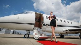 Private aviation report reveals preferences of business elite and wealthy fliers 37