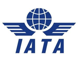 IATA: Global Standards, More Data Use, Key to Safely Managing Future Demand