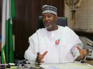 Minister: No domestic airline filled the vacuum left by Nigeria Airways