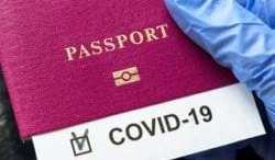 COVID-19 slashes global tourism revenue by $316 billion 8