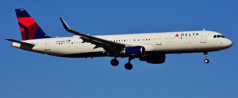 Delta flight makes emergency landing after unruly passenger makes terroristic threats, tries to open door midair 45