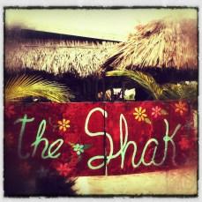 The_Shak