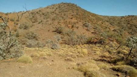 View near the Pinnacles