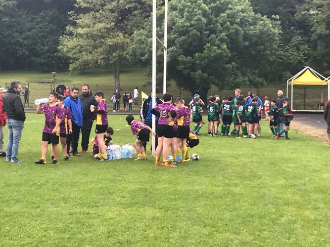 rugby01.jpeg?fit=667%2C500