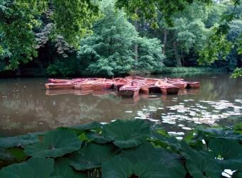 Bürgerpark Bremen vegan in Bremen