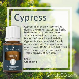 Young Living Cypress