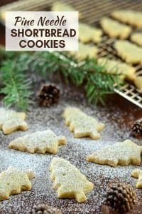 Melt in your mouth Pine Needle Shortbread Cookies. A twist on an old favourite with just a hint ofpiney, citrusy flavour. Delicate, delicious & sure to impress!