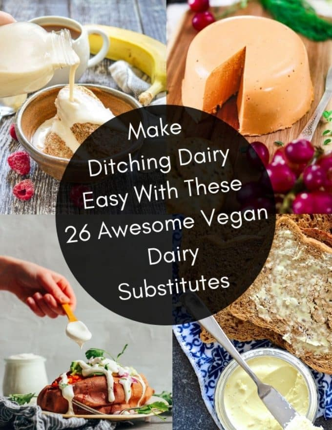 Up your vegan game with these super tasty vegan dairy substitutes. You'll find everything from plant-based milk, cheese, yogurt and butter!