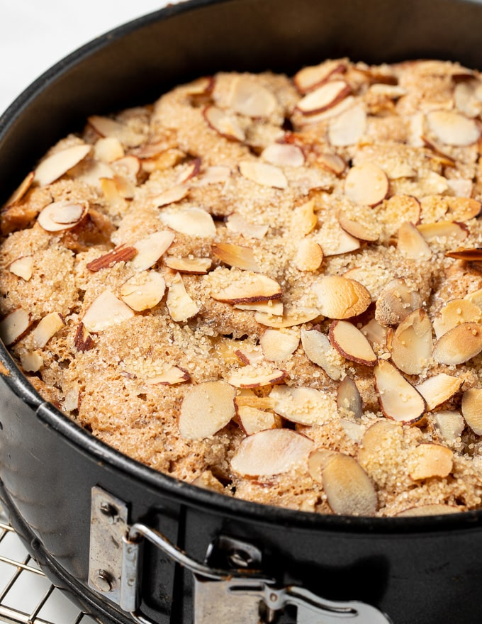vegan apple cake in a springform pan