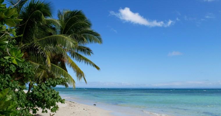 Destination de rêve dans l'Océan Indien : Voyage à l'île aux Nattes
