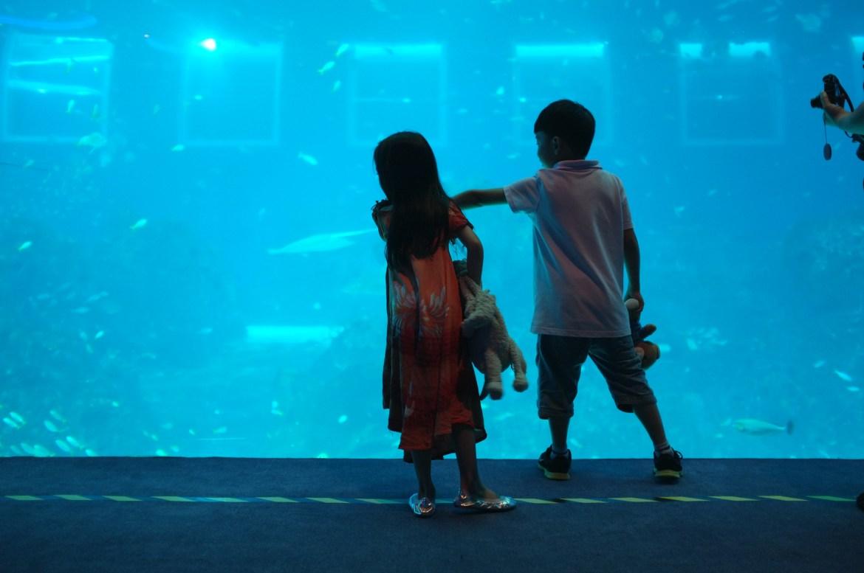 Aina made a friend in the big aquarium :)