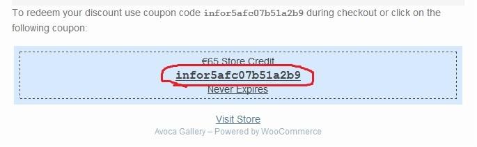 screen shot: sample voucher code