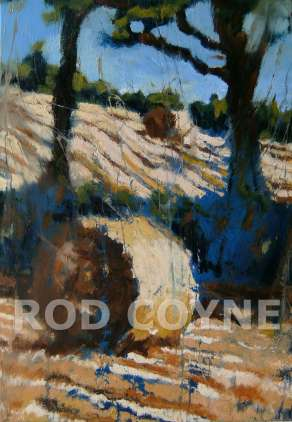 two hay bales , two trees oil on canvas by rod coyne