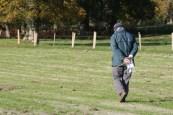 Fieldwalking Nov 2011 2