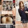 春香ルリ NEW REC CASE-02
