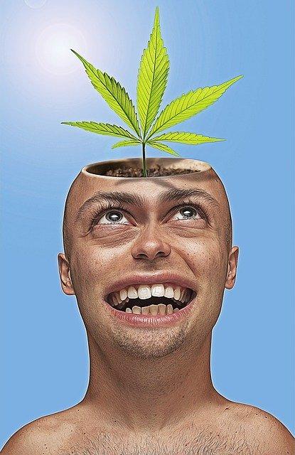 Coltivazione cannabis per uso personale