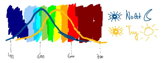 Sichtbares Lichtspektrum - Empfindlichkeit (oben 100%) und der Unterschied zwischen Tag- und Nachtsehen. 400-700 nm bei Tag (Peak bei Grün/Gelb von 555nm) und 450 bis 600nm bei Nacht (Peak bei Blau/Grün und 507nm).