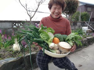 旬の野菜の詰めAWA せコ~ス