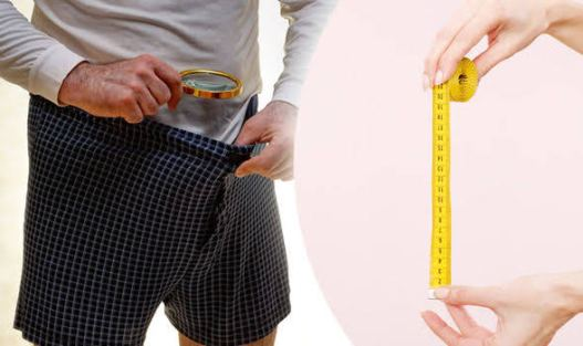 Foods that Increase Penis Size Without Side Effect