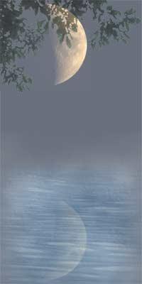 reflected moonlight