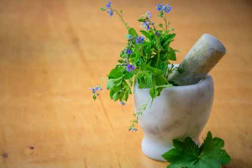 Marble mortar and pestle overflowing with small purple flowers and greenery. Humility is the best medicine for big egos.