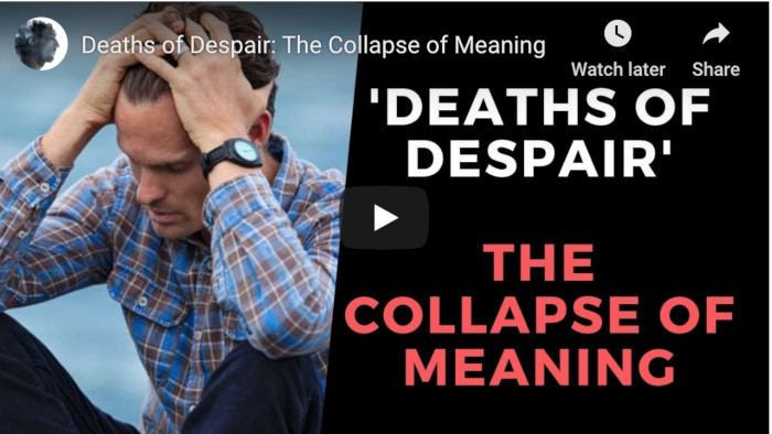 Watch: Deaths of Despair: The Collapse of Meaning