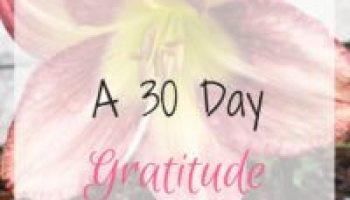 30 Day Gratitude Challenge, 30 Day Challenge, Awaken Happiness, Gratitude, Gratitude Challenge, Happier This Month, Happier, Happiness